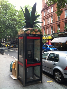 Cabines Ananas