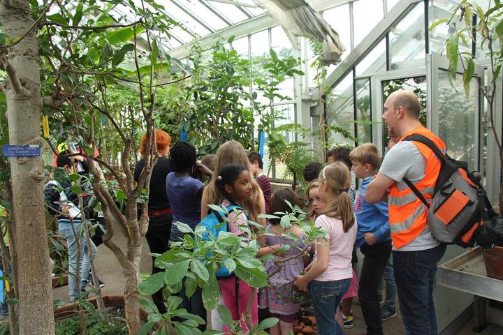 Le Botaniste - enfants